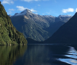 New Year's Eve on Doubtful Sound!